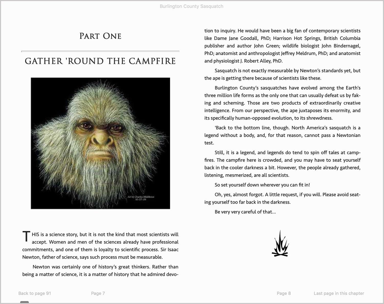 Ebook formatting sample